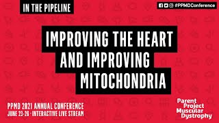In the Pipeline: Improving the Heart and Mitochondria