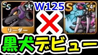 DQMSL★4新生デモンスペーディオ闘技場デビュー!おまえ最高だぜ!