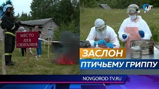 В Крестецком районе провели учения по ликвидации очага птичьего гриппа