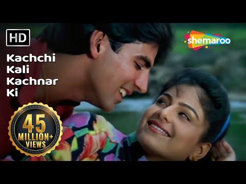 Kachchi Kali Kachnar Ki   Akshay Kumar   Ayesha Jhulka   Waqt Hamara Hai   Bollywood Songs   Asha