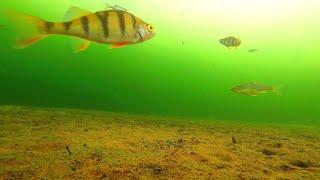 Рыбалка в назарово красноярский край места