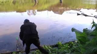 Рыбалка на карася. Полный садок к