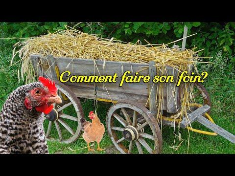 , title : 'Comment faire son foin? Litière pondoir poule, poussin, lapin, canard