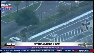 FNN: Coyote on the LOOSE! Running on Runway of Burbank Airport