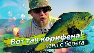 Рыбалка с берега на бали