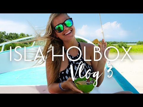 Searching for Whale Sharks in Isla Holbox (VLOG #3)
