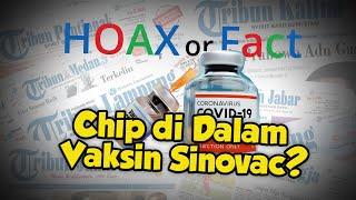 Hoax Kabar di Vaksin Sinovac Ada Chip yang Bisa Mengontrol Masyarakat Seumur Hidup, Ini Faktanya