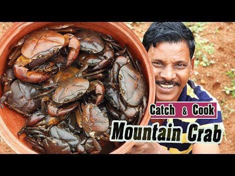 வெள்ளி மலையில் கருப்பு நண்டு | Mountain Crab Catch & Clean & cook | பாரம்பரிய  சமையல்