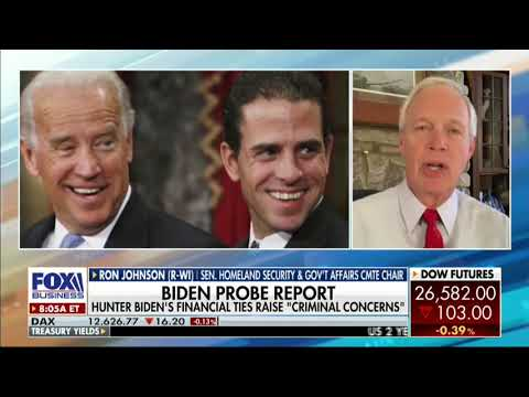 """Sen. Johnson On Hunter Biden: """"Troubling Web That Represents Potential Conflicts Of Interest"""""""