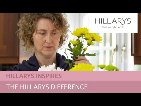 The Hillarys difference - all about our service YouTube video thumbnail