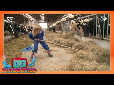 Inge woont op de boerderij (Kindertijd KRO-NCRV)