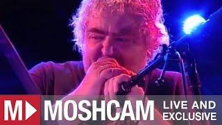 Daniel Johnston - Revolution (The Beatles) | Live in Sydney | Moshcam