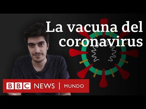 Avances Científicos En El Desarrollo De La Vacuna Contra El COVID-19