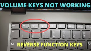 Volume Button Not Working - Reverse Function Keys and Multimedia Keys (F1-F12)