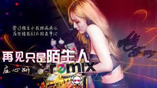 庄心妍 Ada Zhuang - 再见只是陌生人「DJ REMIX 伤感舞曲 🎵」超劲爆 ⚠