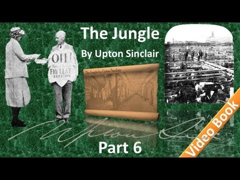 Part 6 - The Jungle Audiobook by Upton Sinclair (Chs 23-25)