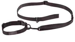 VTAC Ranger Buddy: Dog Leash And Collar Combo