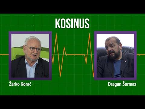 Kosinus: Kosovo u suštini nikad nije bilo stvarni deo Srbije