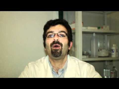 Esame fisico del video massaggio prostatico