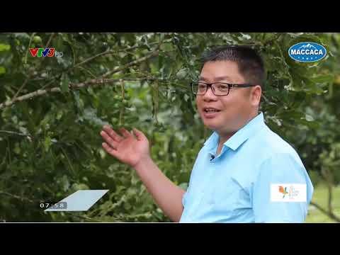 VTV3 - Mỗi ngày một niềm vui - Maccaca 25/05/2019