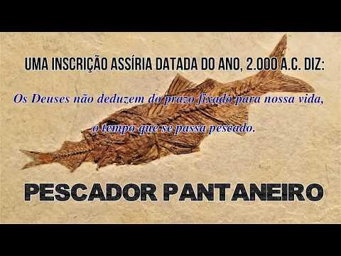PESCADO COM AMIGOS EM BARÃO DE MELGAÇO MT