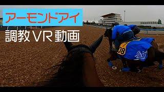 アーモンドアイ 調教VR動画(Almond Eye training video)
