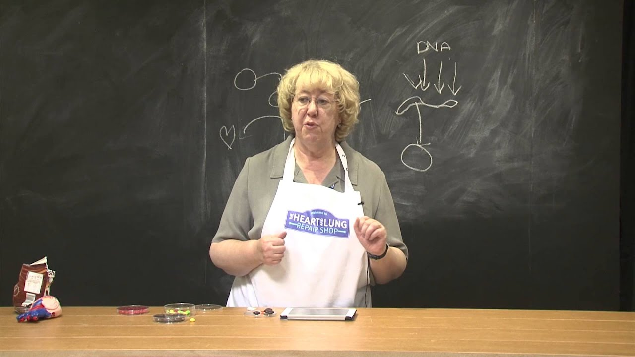 Shop demo - Beating Heart Cells by Sian Harding