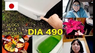 Me Regañan por Comprar Flores + La Tina Verde JAPON - Ruthi San ♡ 19-11-17