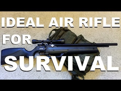 The Ideal Air Rifle for Survival (PCP with built-in Pump)