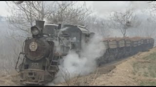 preview picture of video '[China Steam Locomotive C2]Xingyang Brickworks Railway 河南省建材工場のナロー蒸機(1/3)'