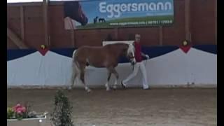 video of Winzertraum