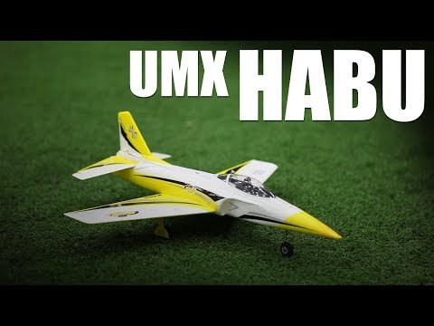 flite-test--umx-habu--review