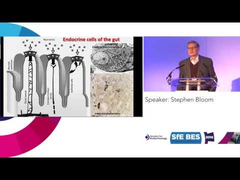 Plenary Lecture 5: Society for Endocrinology Jubilee Medal Lecture