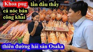 Thiên đường hải sản ở Osaka - Khoa Pug ngạc nhiên thấy cá nóc bày bán công khai ở chợ Nhật bản
