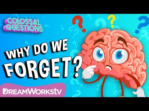 Why Do We Forget Things? | COLOSSAL QUESTIONS