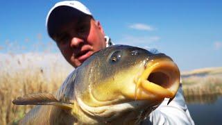 Ловля ОГРОМНЫХ КАРПОВ прямо под ногами!!! Рыбалка на простую удочку!
