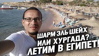Шарм-Эль-Шейх или Хургада - куда лучше полететь на отдых в Египет? Зимой в Египет в 2018!
