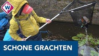 Schoonmaakactie in de Delftse grachten - OMROEP WEST