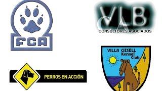 preview picture of video 'Villa Gesell Kennel Club - Cámara 1 - Día Sábado www.perrosenaccion.tv'