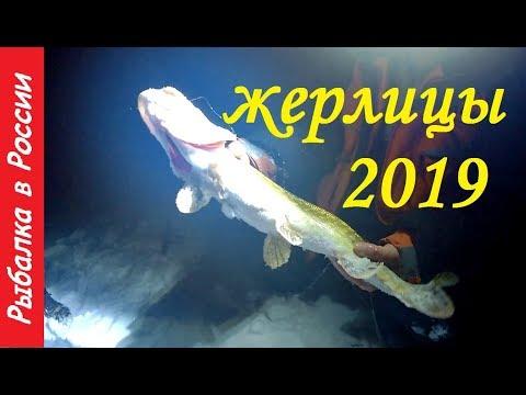 Ночные жерлицы.  Экстремальная рыбалка.  Ловля щуки на жерлицы 2019