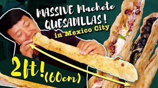 MASSIVE MACHETE QUESADILLAS & BEST Fried Tacos! Mexico City Street Food Tour