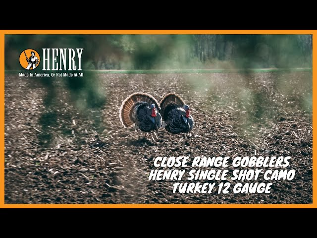 CLOSE RANGE TURKEY HUNTING! Henry single shot camo turkey shotgun.