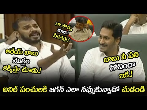 See How CM YS Jagan Laughed For Anil Kumar Punches On Chandrababu || AP Assembly || NSE
