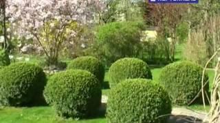 preview picture of video 'EINFAMILIENHAUS in 1220 Wien / Kagran mit traumhaften Garten'