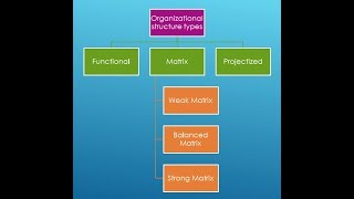 Types Of Organizational Structure | Functional | Matrix | Projectized