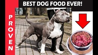 Best Dog Food Ever To Feed your Puppy. CREATE BIG DOGS!