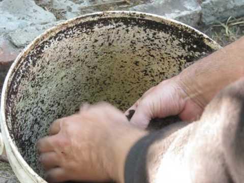 Kung magkano ang kumain kalabasa buto mula sa mga worm