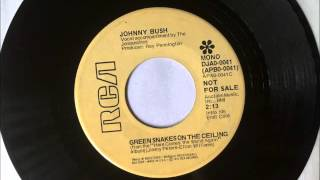 Green Snakes On The Ceiling , Johnny Bush , 1973 Vinyl 45RPM