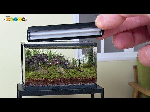Miniature Aquarium (19:17)