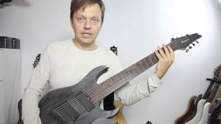 Ibanez Fanned Fret 8-String RGIF8 video review english